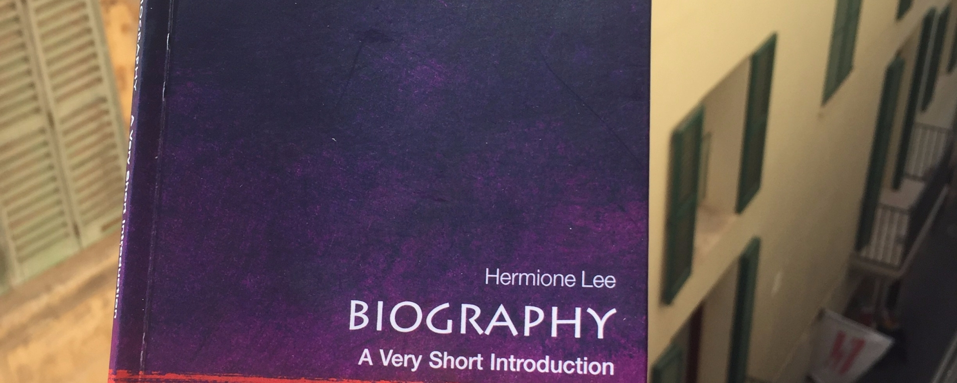 Hermione Lees A Very Short Introduction To Biography Book Review